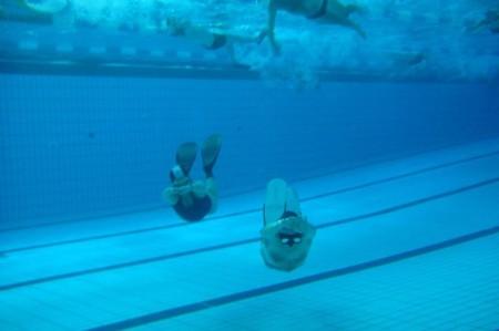 dauphinade bassin, plongée ecole, echelon refusé
